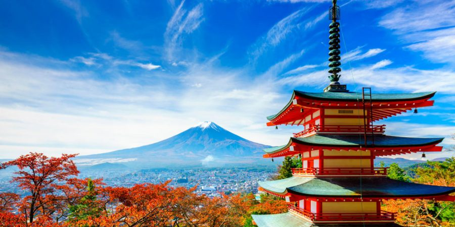Attractions in Tokyo Tour Packages That Kids Would Love