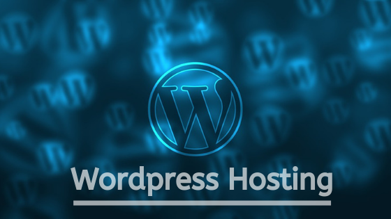 5 Great Reasons To Choose WordPress Hosting For Your Business Website