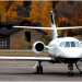Exceptional Flight Ticketing Service