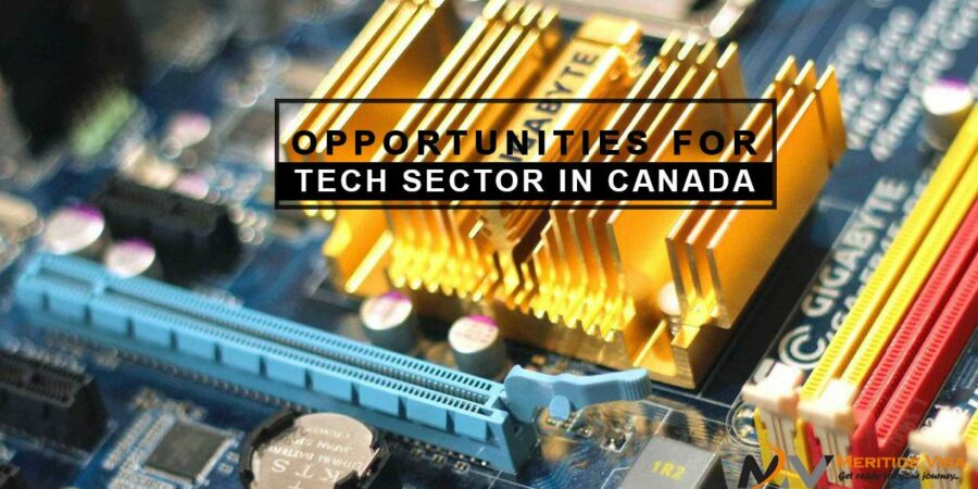 How good are the opportunities for Tech Sector in Canada?