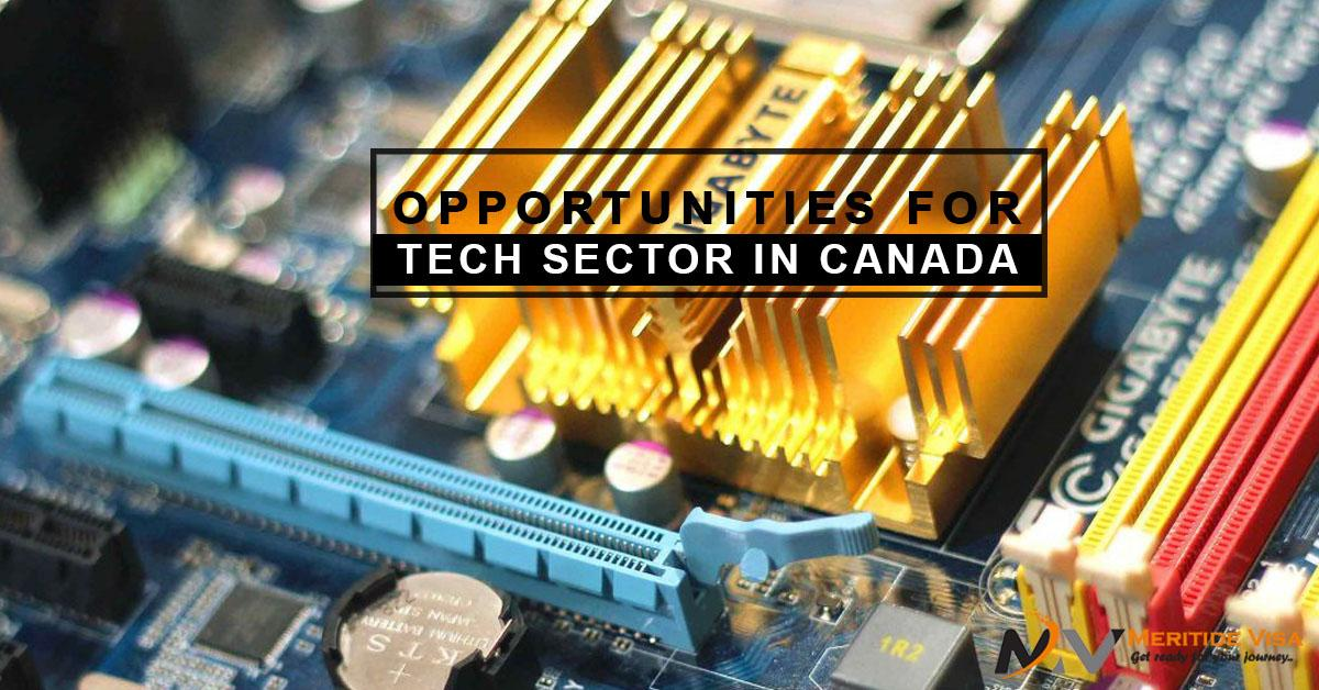 How good are the opportunities for Tech Sector in Canada